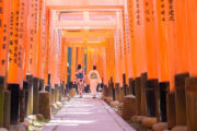 13 day tour of Japan