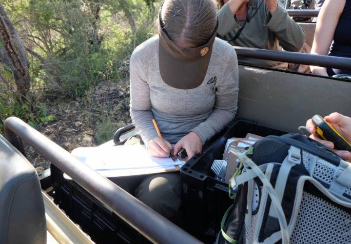 Safari Ranger Project Header